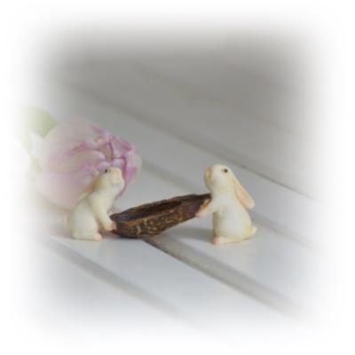 Kaniner med barkbåt