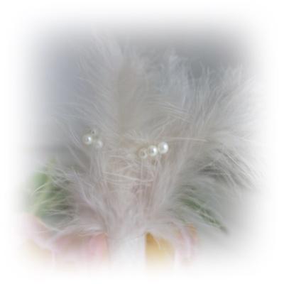fjädrar med pärlor