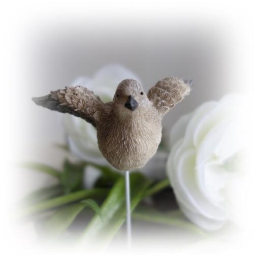 Fågel med vingar